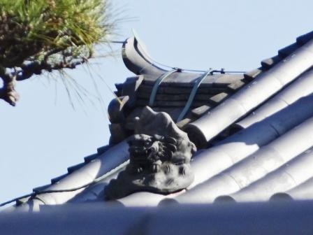奈良14.jpg
