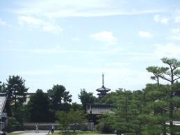 薬師寺4.JPG