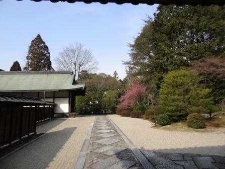奈良52.jpg
